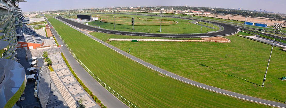 Meydan-carreras-caballos-1110x420