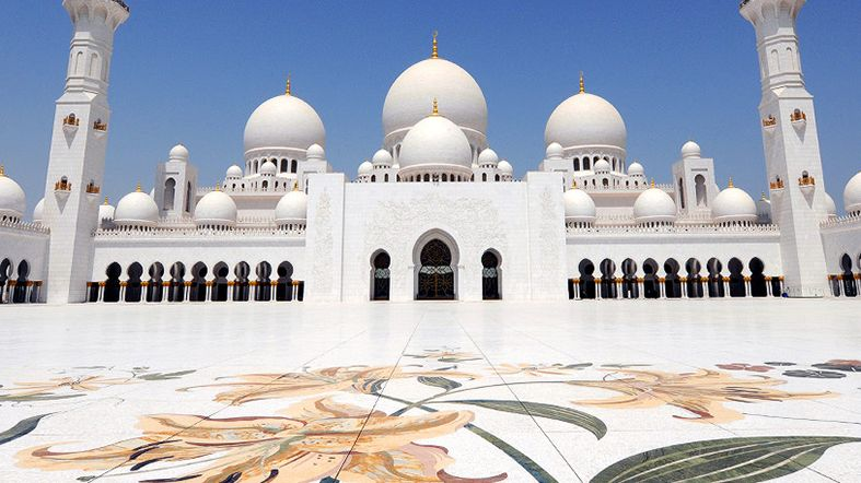 Planes Abu Dhabi - See Dubai Tours