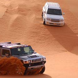 Expedición al Desierto de Liwa