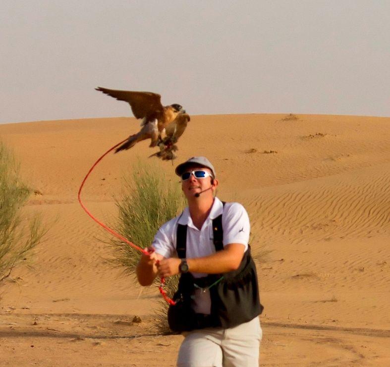 See Dubai Tours - Espectaculo Halcones - Contratar