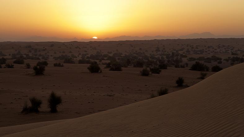 Desierto DDCR