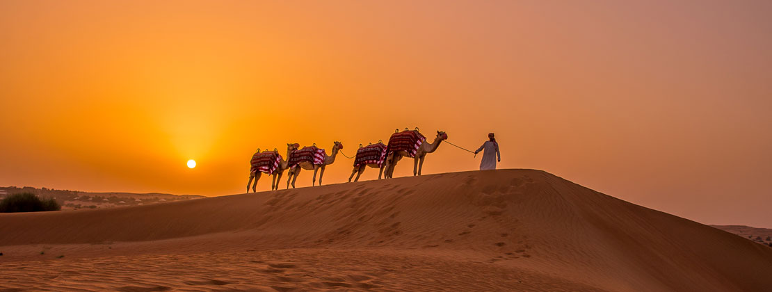 Al Maha atardecer desierto